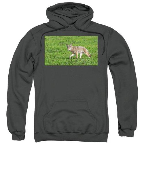 California Walk  Sweatshirt