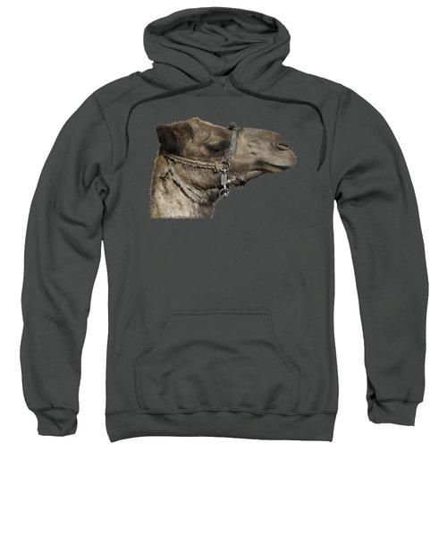 Camel's Head Sweatshirt