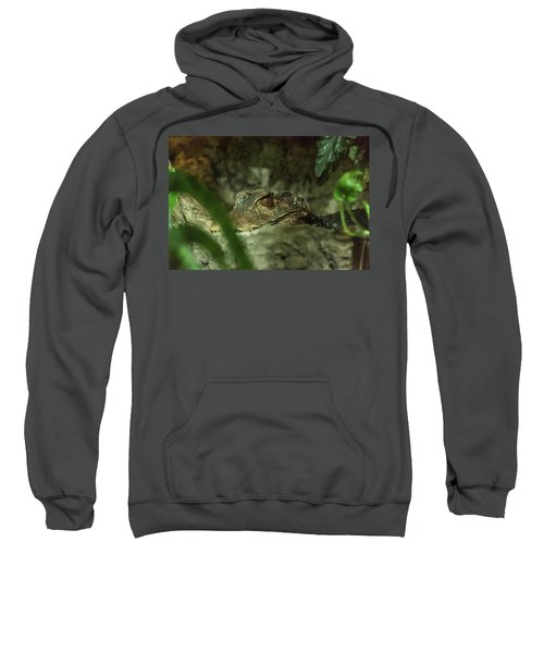 Can You See Me Sweatshirt