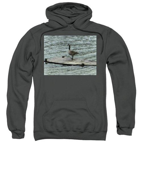 Canada Goose Lake Dock Sweatshirt
