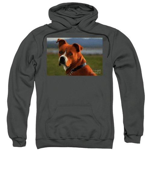 Canelo Sweatshirt