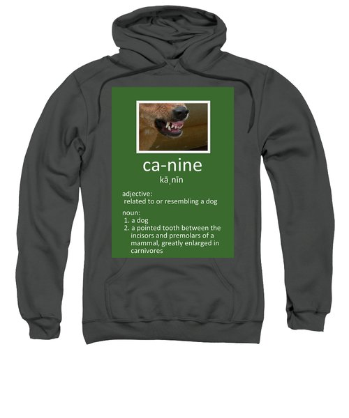 Canine Poster Sweatshirt