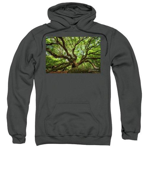 Canopy Of Color At Angel Oak Tree  Sweatshirt
