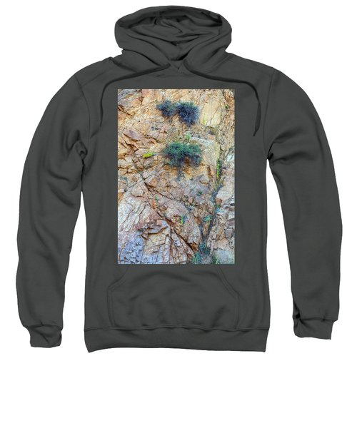 Sweatshirt featuring the photograph Canyon Vegetation by James BO Insogna
