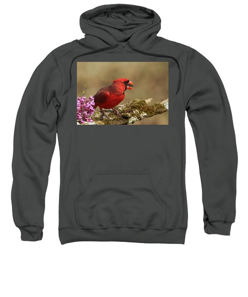 Cardinal In Spring Sweatshirt