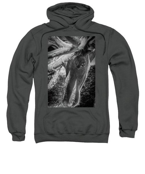 Caribou Black And White Sweatshirt