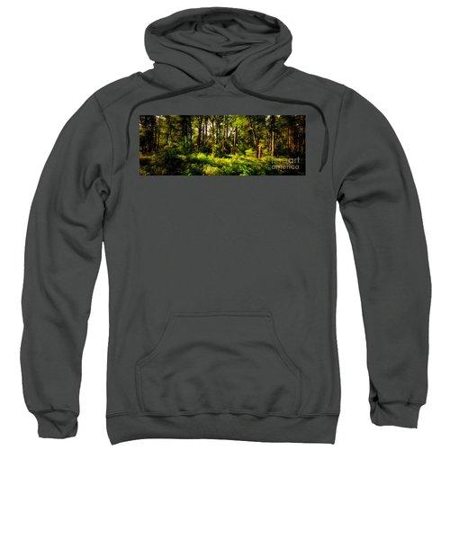 Carolina Forest Sweatshirt