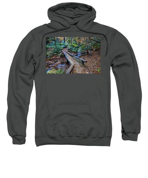 Carpet Of Leaves Sweatshirt
