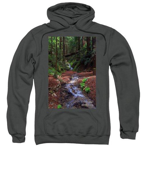 Castro Canyon In Big Sur Sweatshirt