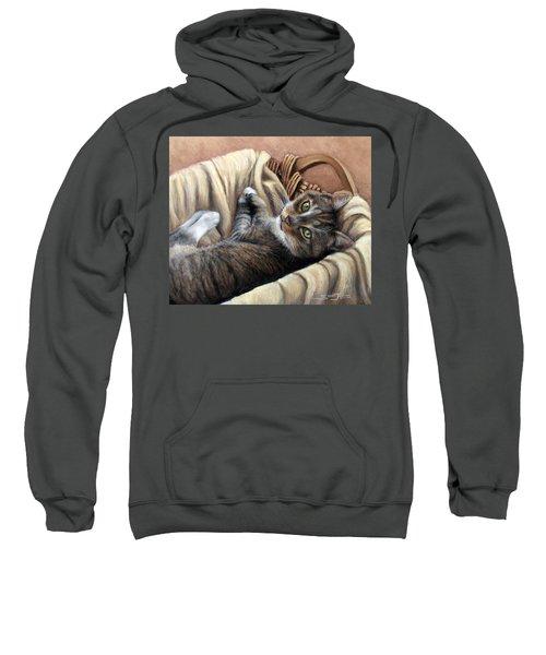 Cat In A Basket Sweatshirt