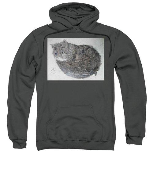 Cat Named Shrimp Sweatshirt
