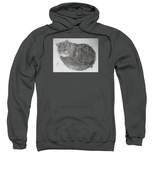 Cat Named Shrimp Sweatshirt