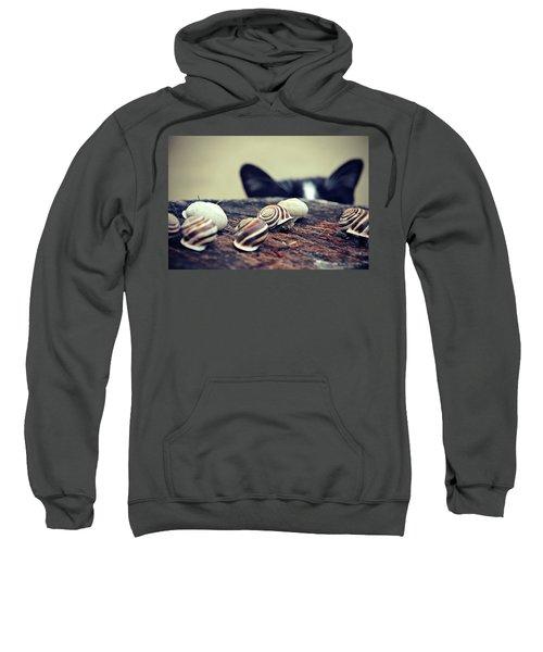 Cat Snails Sweatshirt