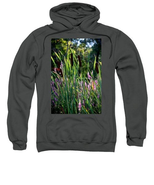 Cat Tails In The Morning Sweatshirt