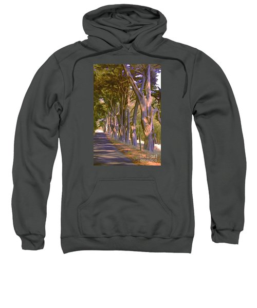 Cathedral Of Trees Sweatshirt