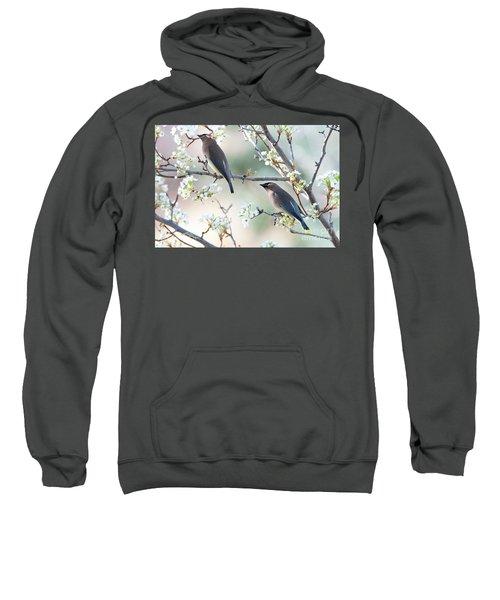 Cedar Wax Wing Pair Sweatshirt by Jim Fillpot