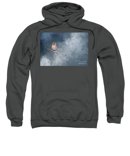 Chaffinch On A Cold Winter Day Sweatshirt
