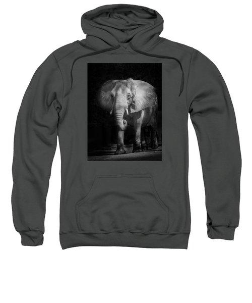 Charging Elephant Sweatshirt