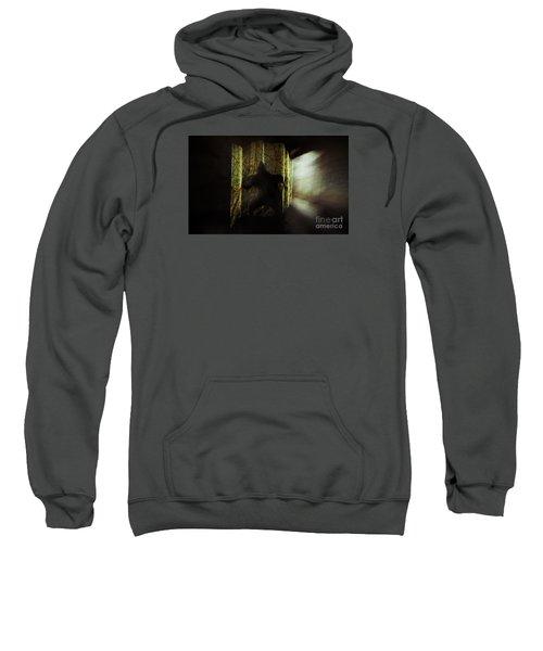 Chasing Shadows Sweatshirt