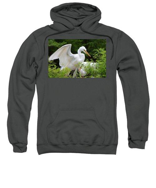 Checking-in Sweatshirt