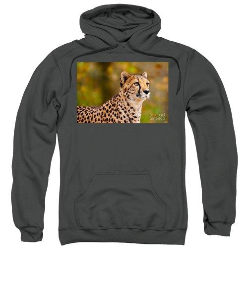 Cheetah In A Forest Sweatshirt