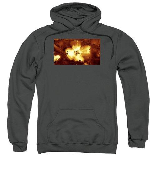 Cherokee Rose Dogwood - Single Glow Sweatshirt