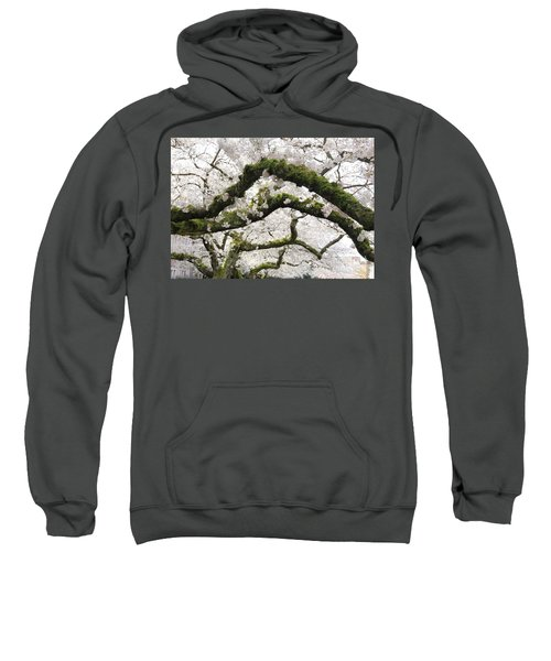 Sweatshirt featuring the photograph Cherry Blossoms 104 by Peter Simmons