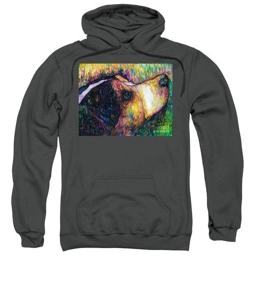 Chewie Sweatshirt