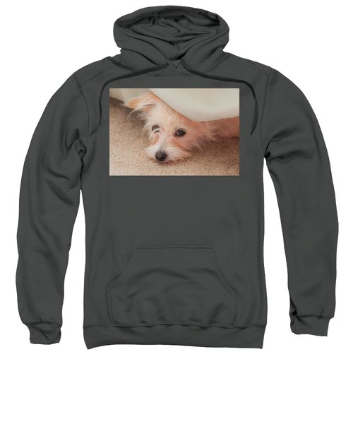 Chica In Hiding Sweatshirt