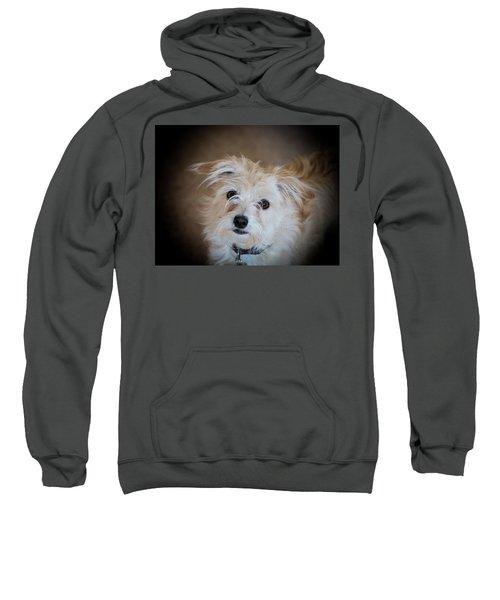 Chica On The Alert Sweatshirt