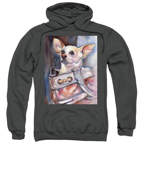 Chihuahua Sweatshirt by Maria's Watercolor