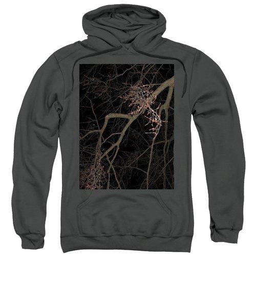 Chilling Night Sweatshirt