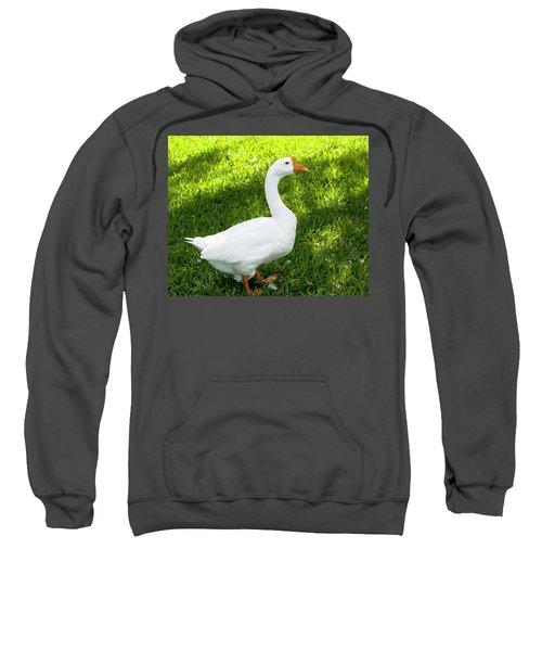 Chinese Goose Sweatshirt