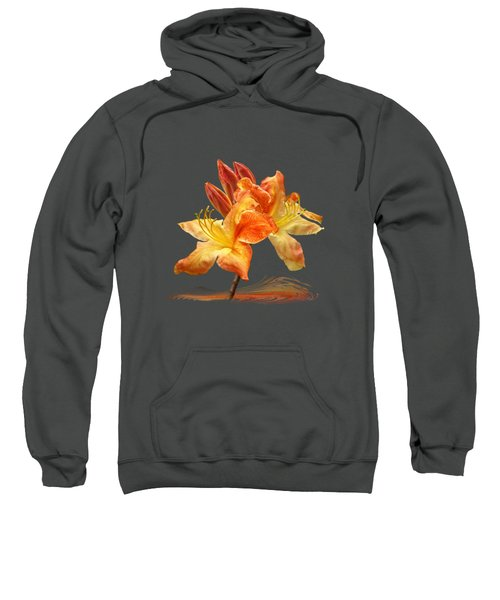 Chocolate Orange Sweatshirt