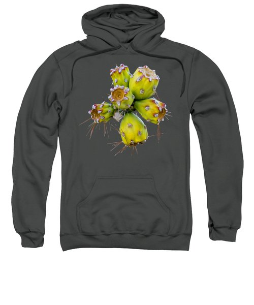 Cholla Fruit S48 Sweatshirt