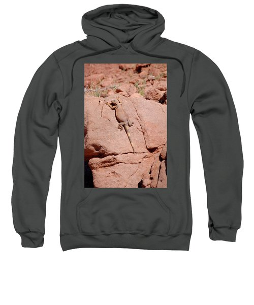 Sweatshirt featuring the photograph Chuckwalla, Sauromalus Ater by Breck Bartholomew