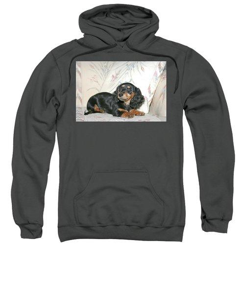 Cinder Sweatshirt