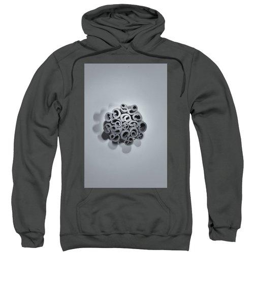 Cinnamon Brain Sweatshirt