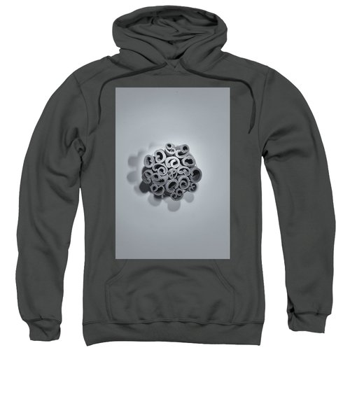 Cinnamon Brain Sweatshirt