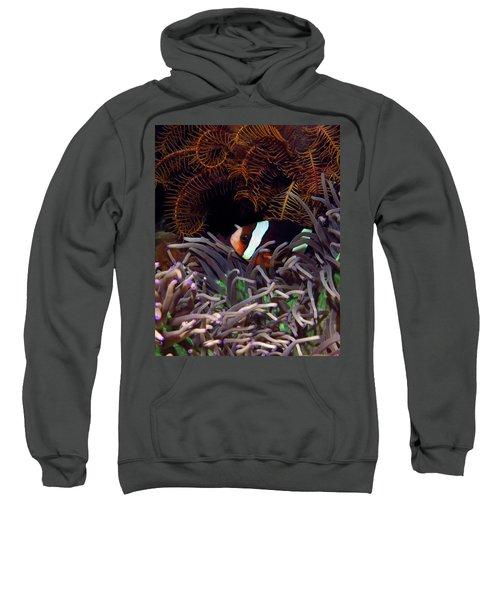 Clark's Anemonefish, Indonesia 2 Sweatshirt