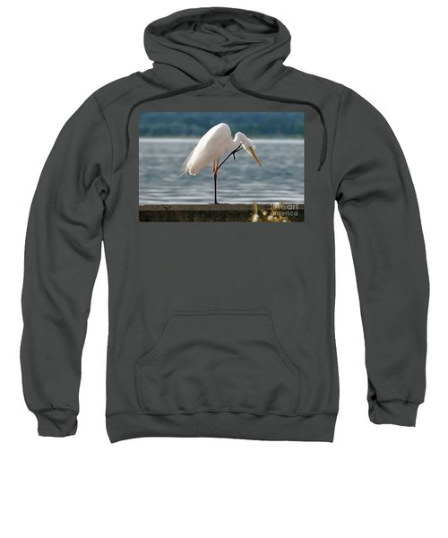 Cleaning White Egret Sweatshirt