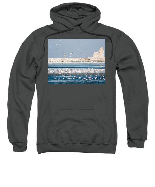 Cleveland Lighthouse In Ice  Sweatshirt