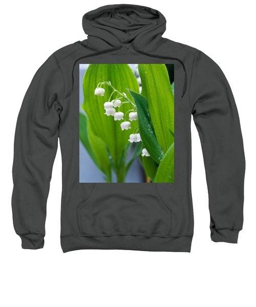 Close-up Of Dew Drops Sweatshirt