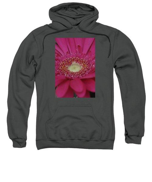 Closeup Of A Flower Sweatshirt