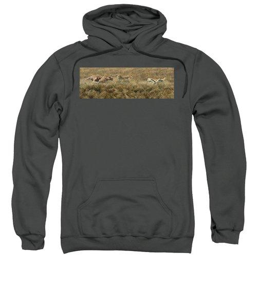 Closing In Fast Sweatshirt