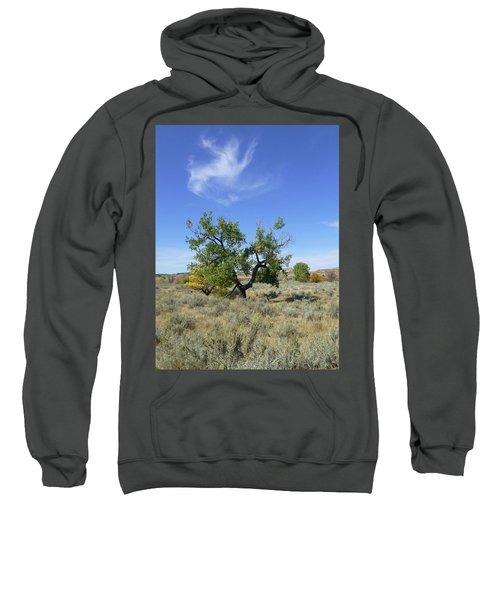 Cloud And Cottonwood Sweatshirt