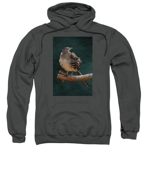 Cocoa Puffed Cuckoo Sweatshirt