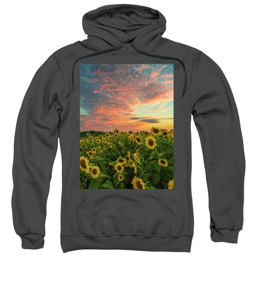 Colby Farm Sunflowers Sweatshirt