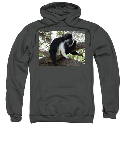 Colobus Monkey Resting In A Tree Sweatshirt