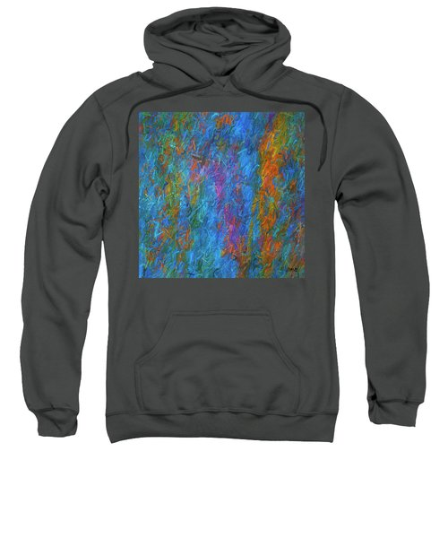 Color Abstraction Xiv Sweatshirt